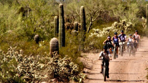 Group of people riding bikes on a dusty dirt road next to cacti