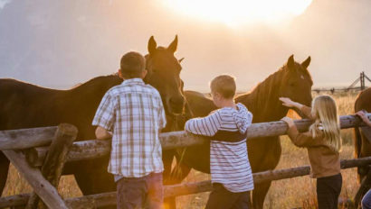 Kids petting horses over a fence