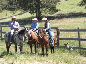Kara Creek Ranch three cowboys sitting on horses in field with dog