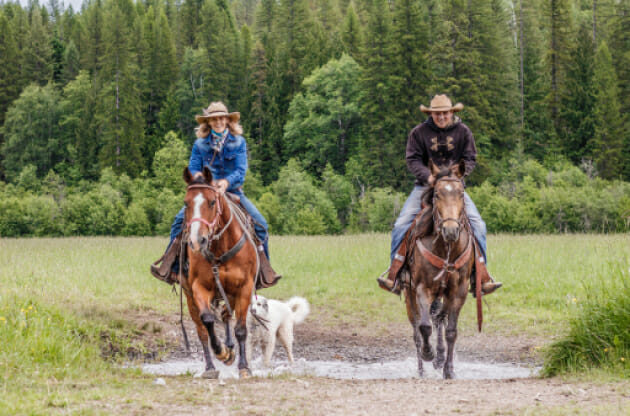 Two people riding horses with a dog following them