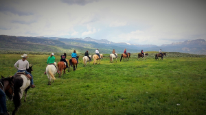 Group of people on horses riding in a line through a field