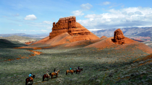 Group of people on horses in the distance