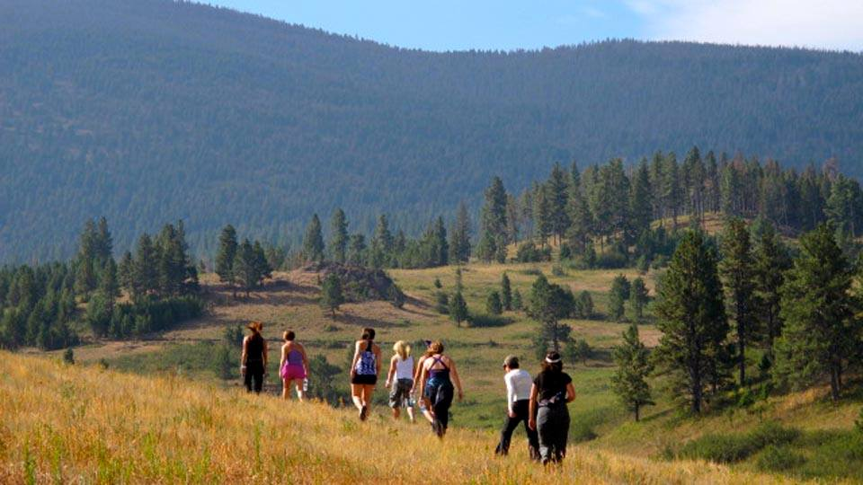 Group of people hiking on yellow side hill with trees and mountains in the background