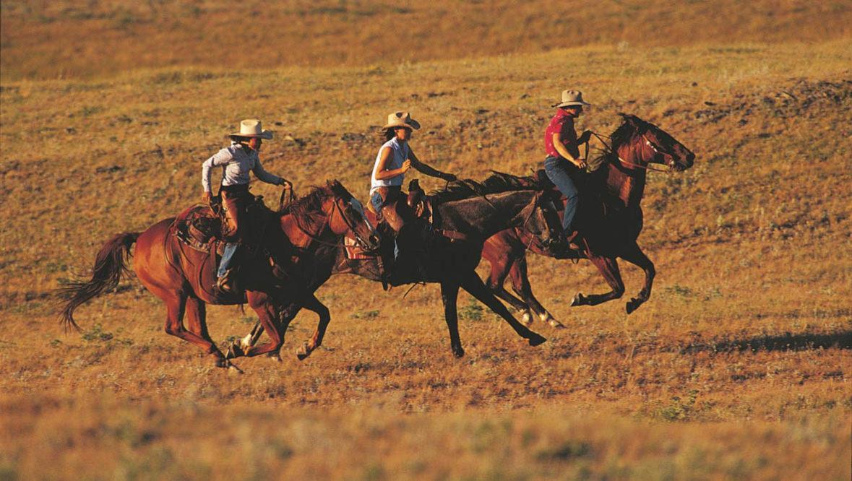 Three guests loping on horses at Bonanza Creek Ranch