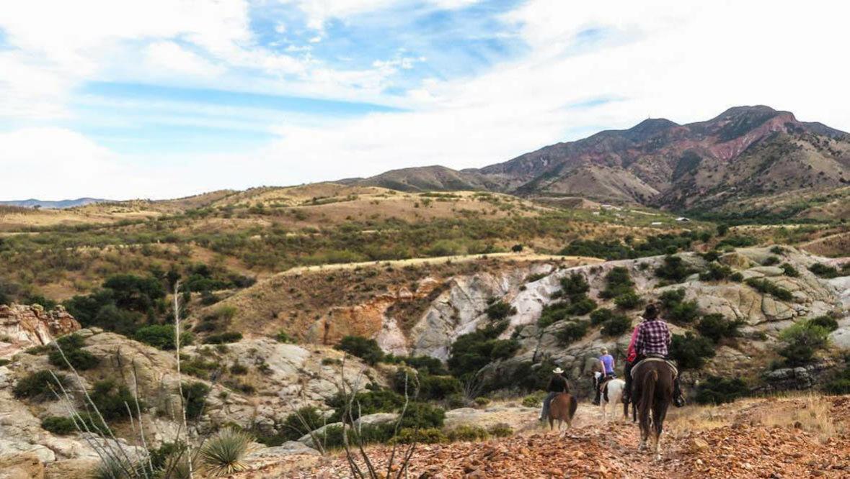 Desert trail ride at Circle Z Ranch