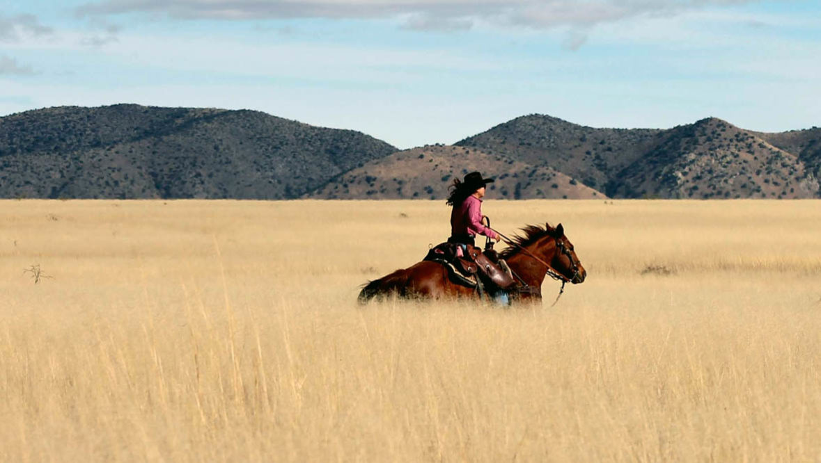 Cowgirl riding in a field at Circle Z Ranch