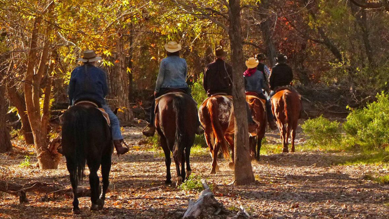 Fall trail ride at Circle Z Ranch