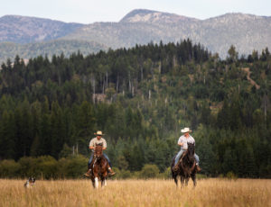 Western Pleasure Guest Ranch two cowboys riding in a field