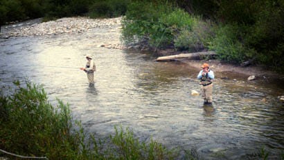 Two guests fly fishing in a creek at Diamond D Rarnch