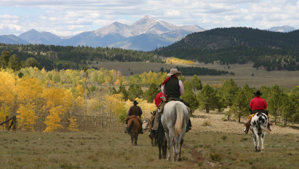 Trail ride among aspen trees in the fall at Elk Mountain Ranch