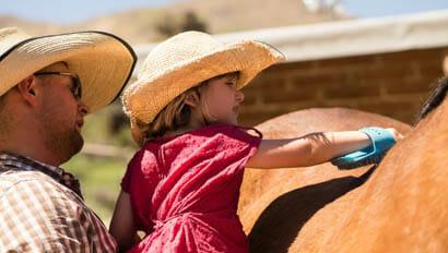 Young girl brushing a horse at Elkhorn Ranch Arizona