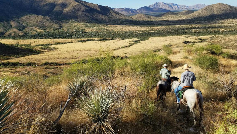 Scenic trail ride at Elkhorn Ranch Arizona