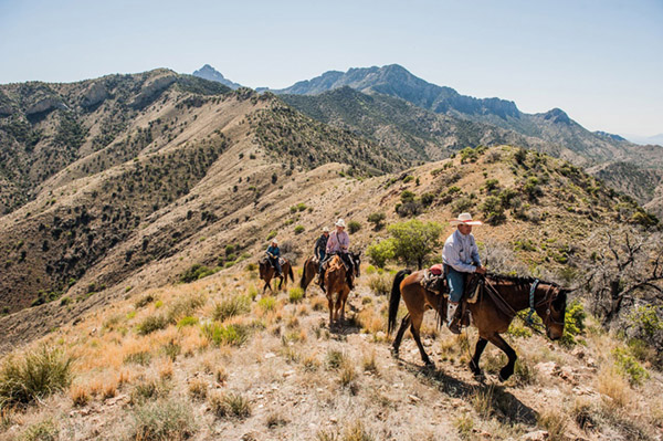 trail ride on ridge with mountains and cactus