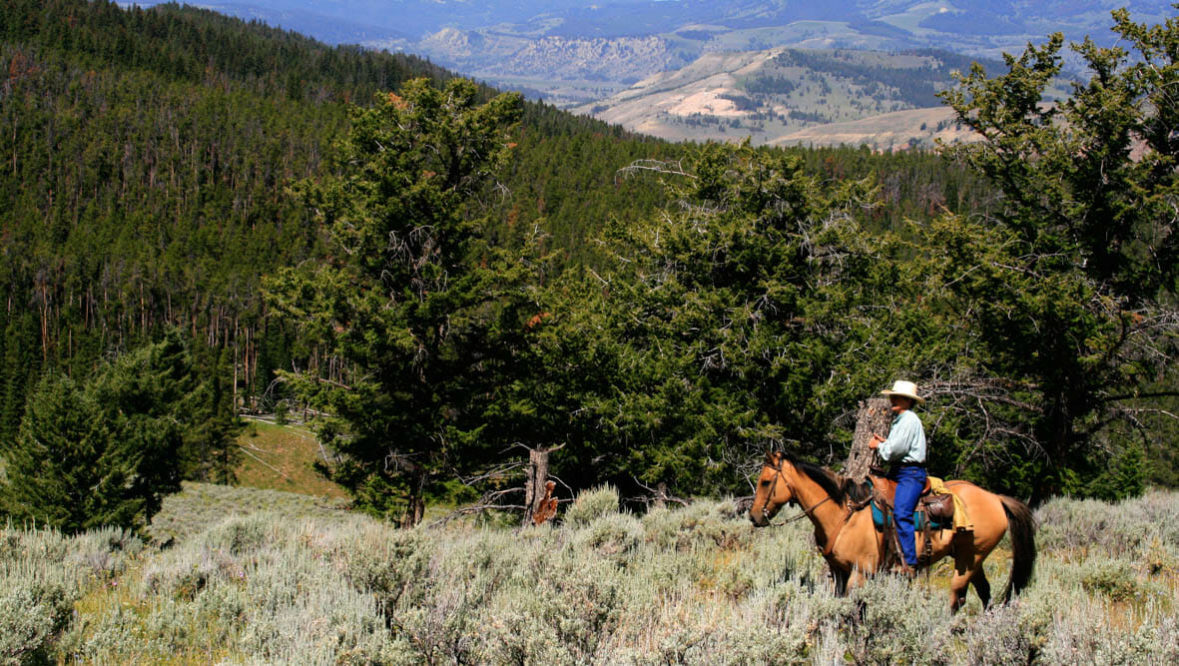 Trail ride at Elkhorn Ranch Montana