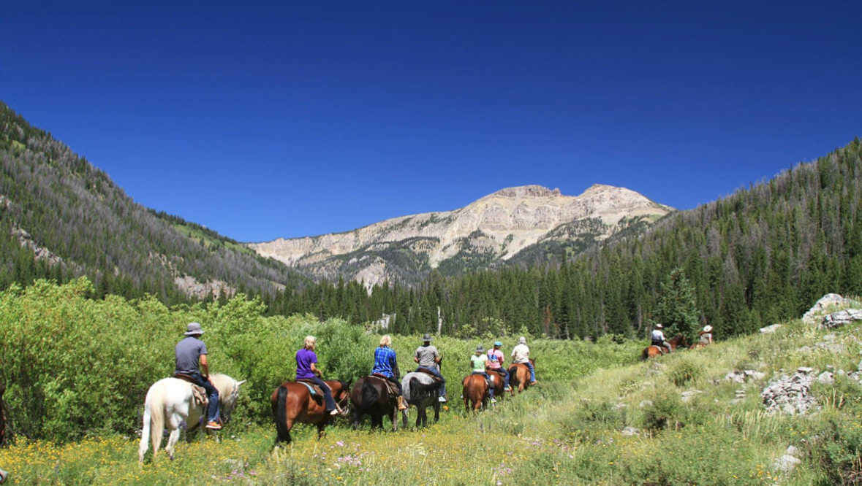 Trail ride at Flat Creek Ranch