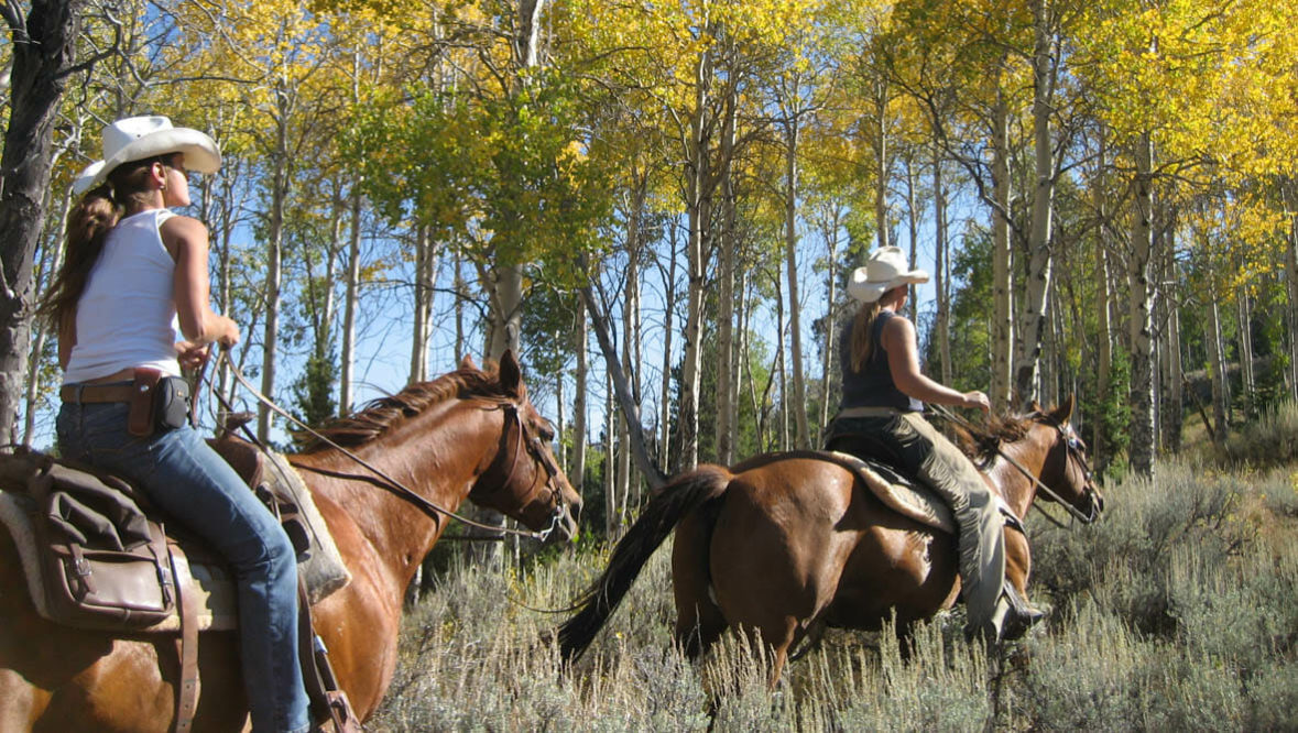 Autumn trail ride at Goosewing Ranch