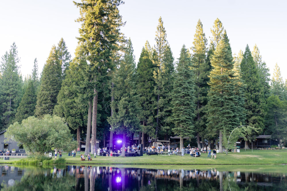 large green lawn with lights and pine trees