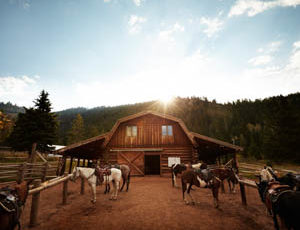 Horses outside of a barn at Gros Ventre River Ranch