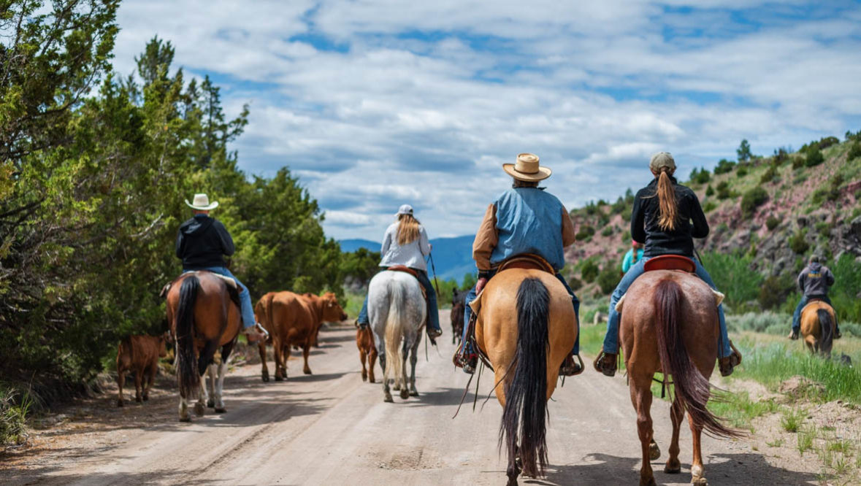 Group horseback ride at Hidden Hollow Ranch