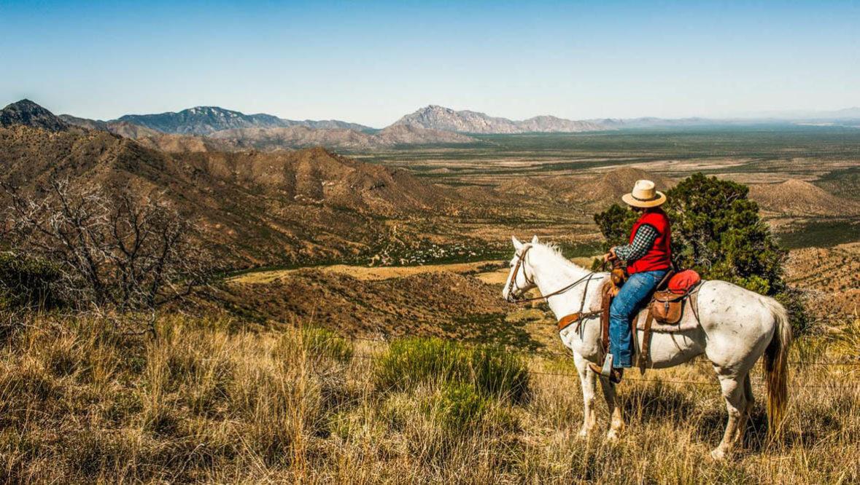 Cowboy and horse looking at the canyon view at Elkhorn Ranch Arizona