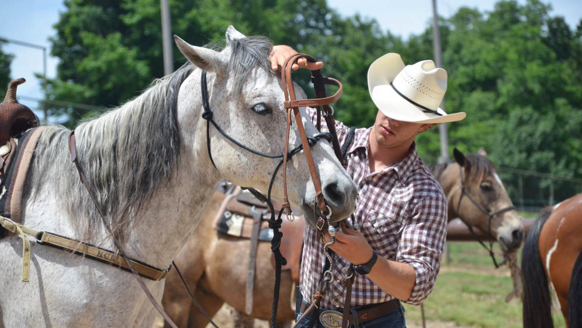 Wrangler putting a bridle on a horse at Horseshoe Canyon Ranch