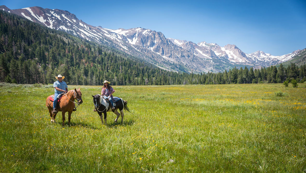 Hunewill Ranch two people riding in a meadow with big mountains