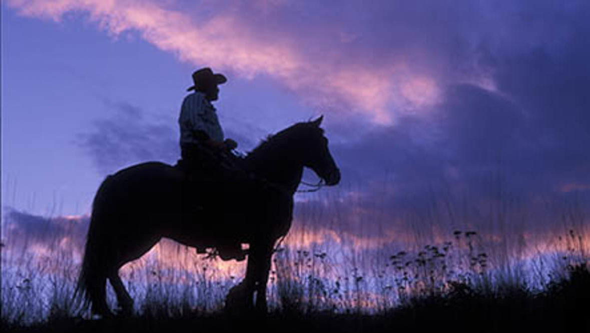 Cowboy at sunset at K Diamond K Ranch