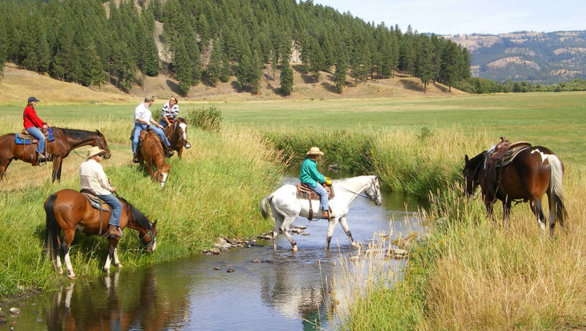 Trail riders crossing a creek at K Diamond K Ranch