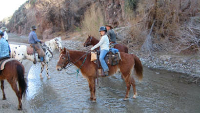 Girl on a horse in a creek at Kay El Bar