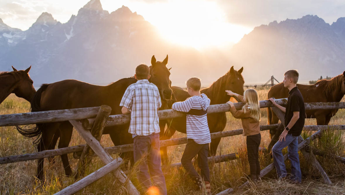 Teens and kids petting horses through a fence at Lost Creek Ranch