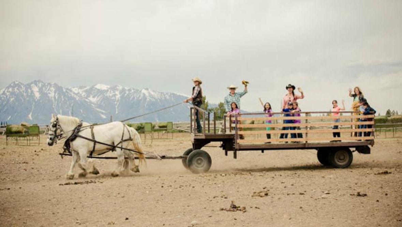 Horse pulling a wagon at Lost Creek Ranch