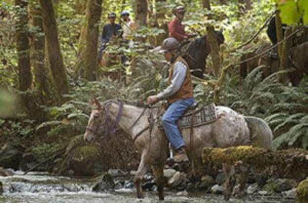 Rider with helmet crossing a creek at Marble Mountain Ranch