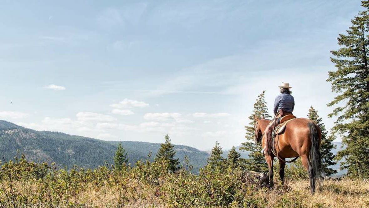 Guest on a horse looking at the view at McGinnis Meadows Cattle Ranch