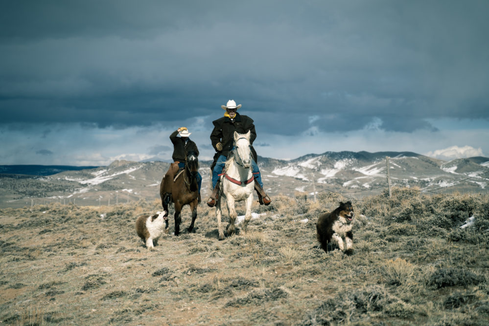 Two Riders Loping