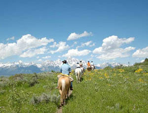 Trail ride in a field at R Lazy S Dude Ranch