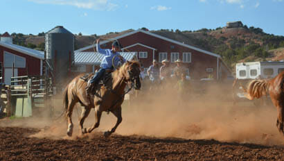 Cattle drive at Red Reflet Guest Ranch