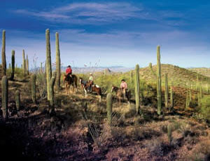 Cactus trail at Rancho de los Caballeros