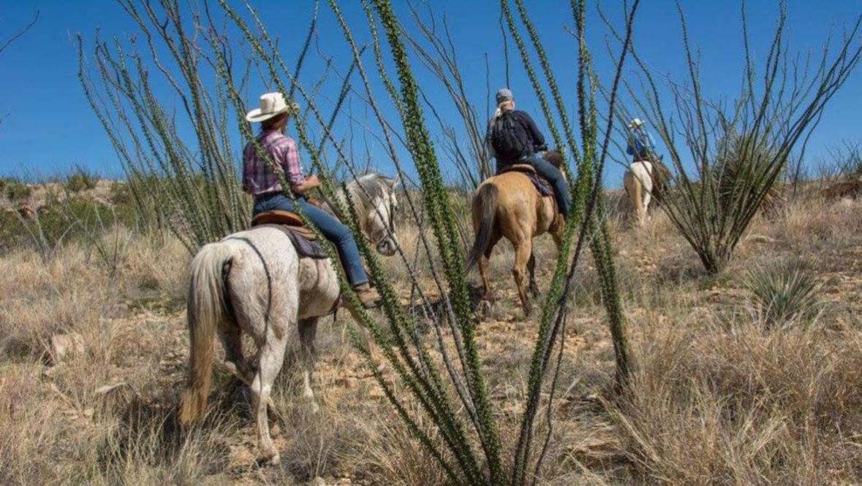 Trail riders at Rancho de la Osa