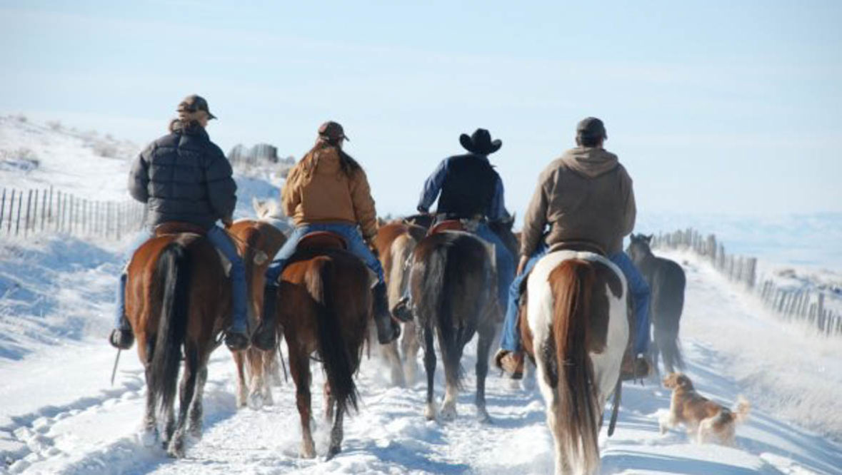 Four riders on a cattle drive in the snow at Red Reflet Guest Ranch