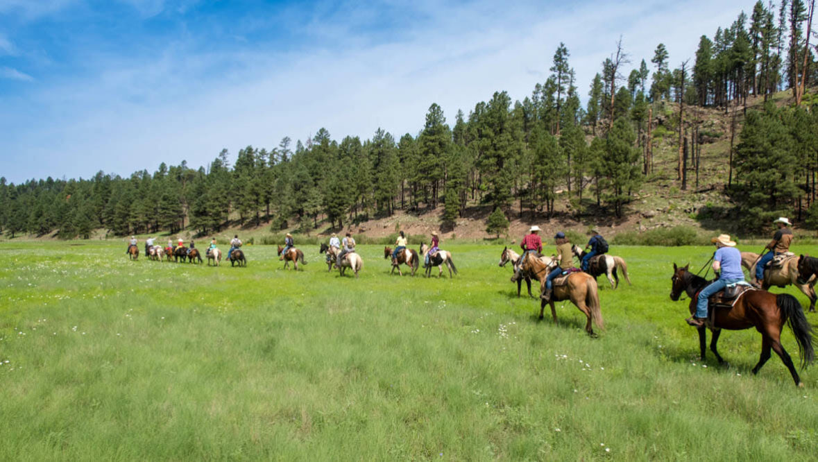 Large group reunion trail ride at Sprucedale guest Ranch