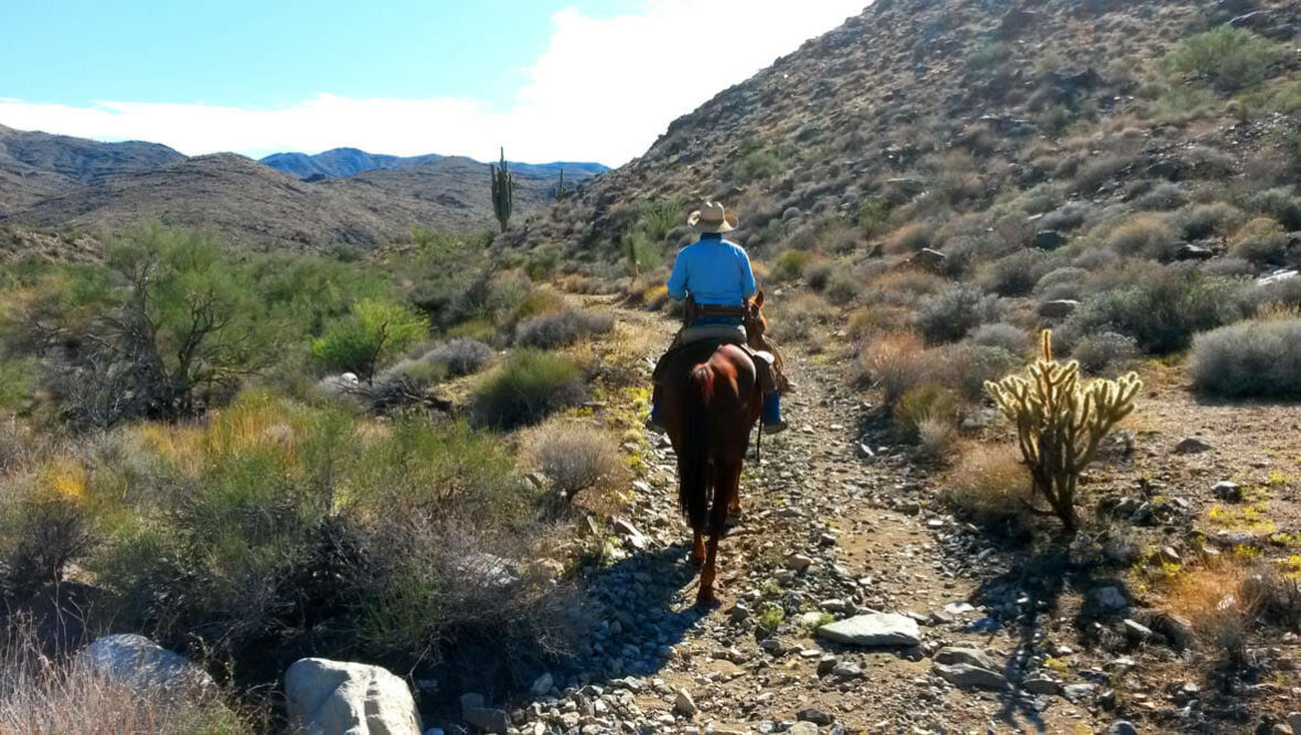 Person riding a horse on a trail at Stagecoach Trails Guest Ranch