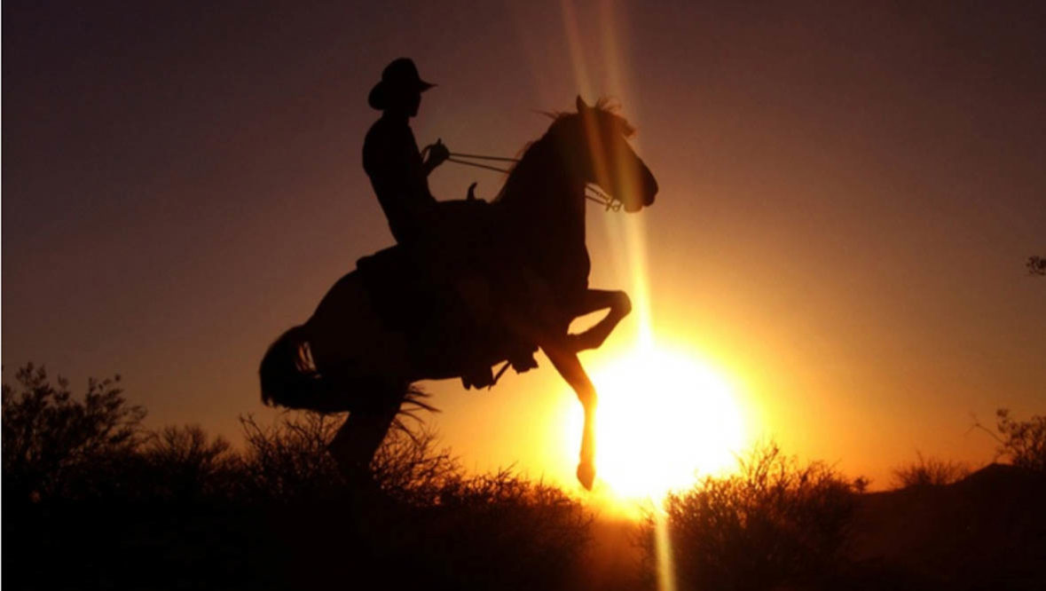 Person on horse rearing up in silhouette at Sunset at Stagecoach Trails Guest Ranch