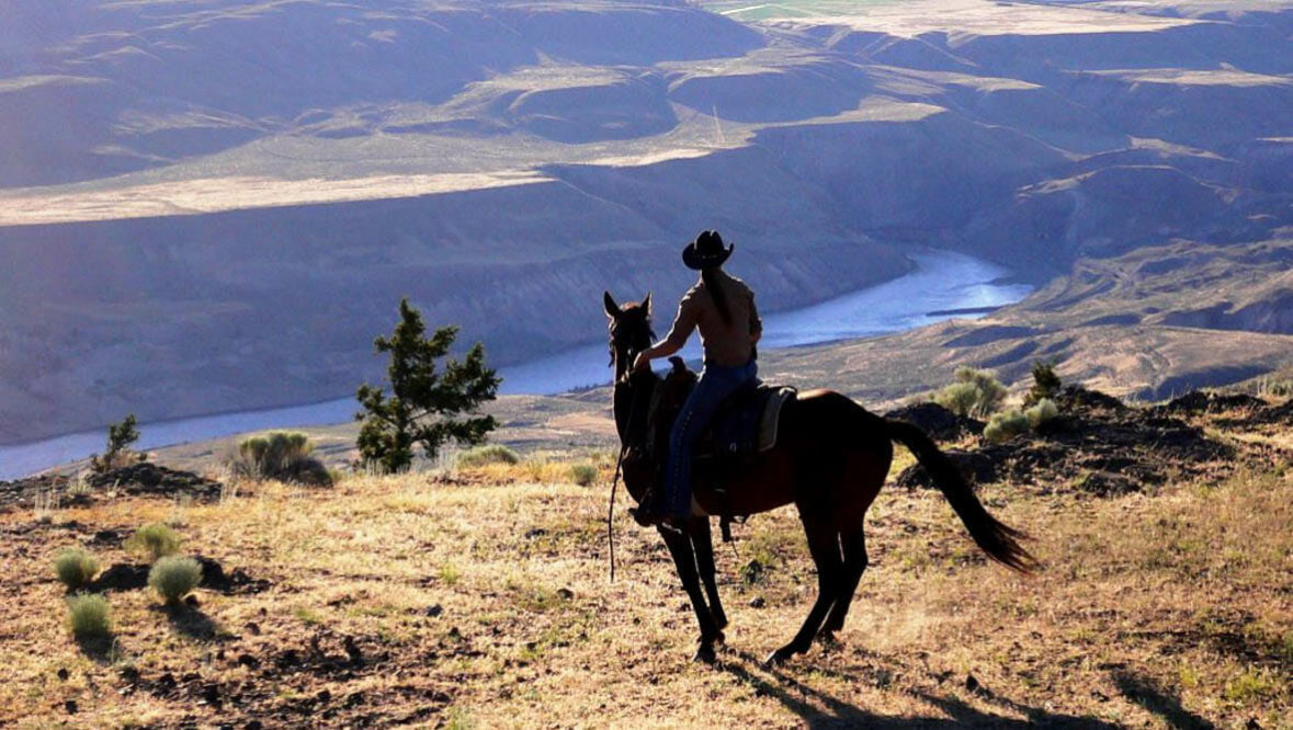 Sundance Guest Ranch cowboy on a horse looking at a view
