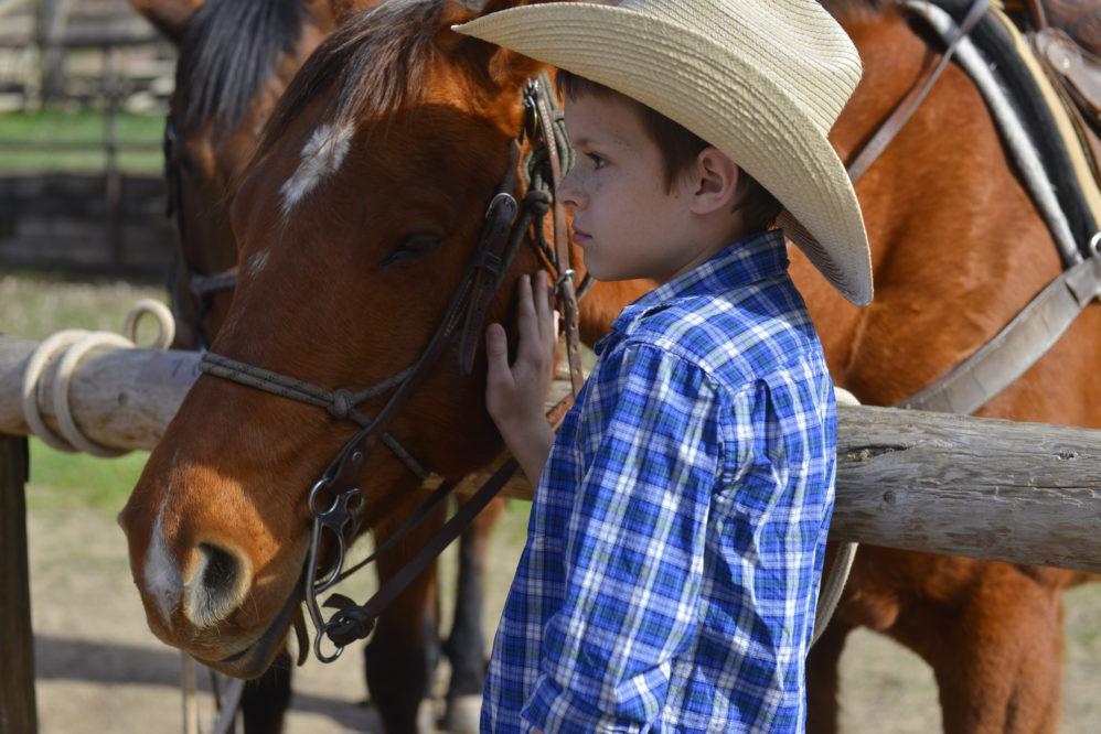 Sylvan Dale Little CowBoy