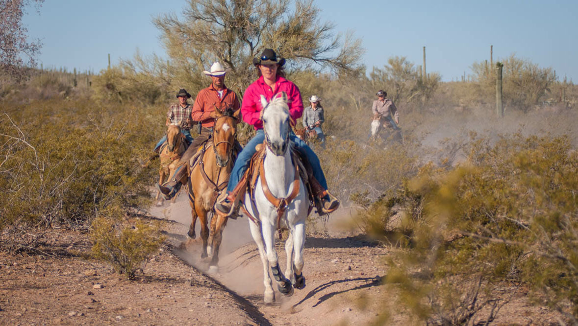 White Stallion fast family trail ride