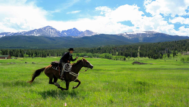Wind River horse running