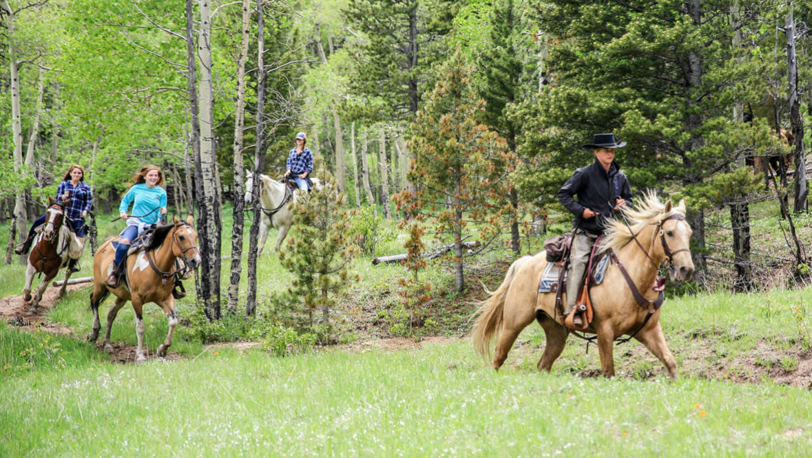 Wind River family on a horse trail