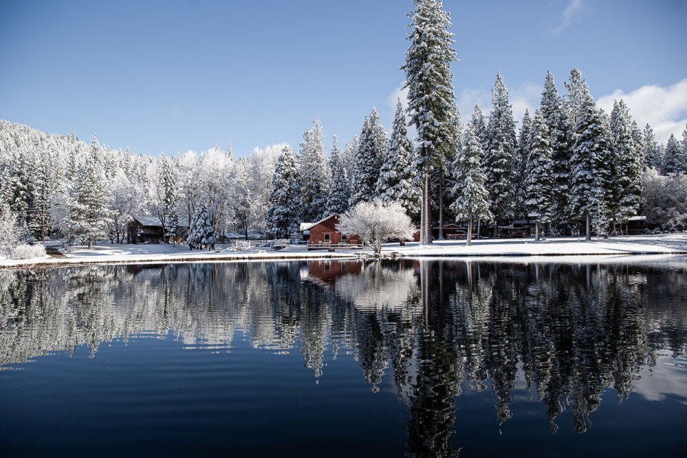 open lake with snow covered banks, cabin and pine trees