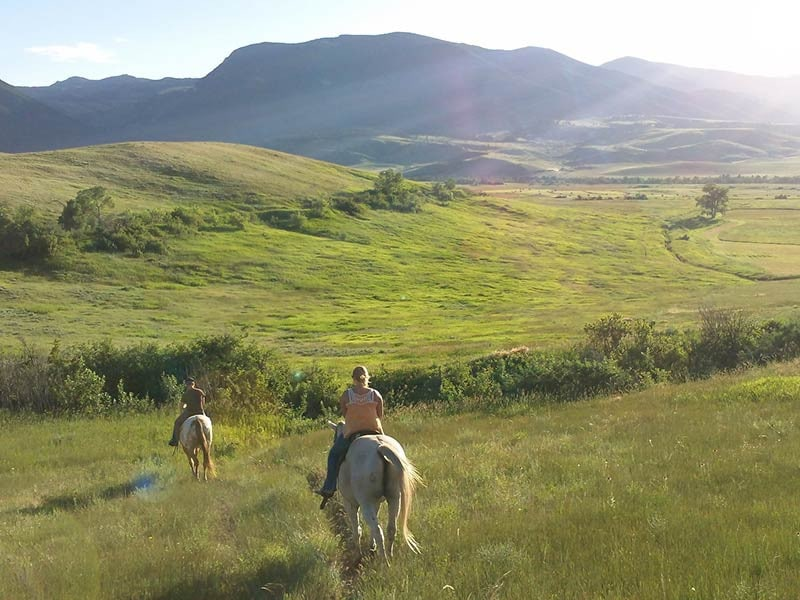 two people riding horses through green hillside