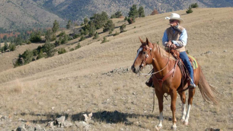 Cowboy at Hidden Hollow Ranch